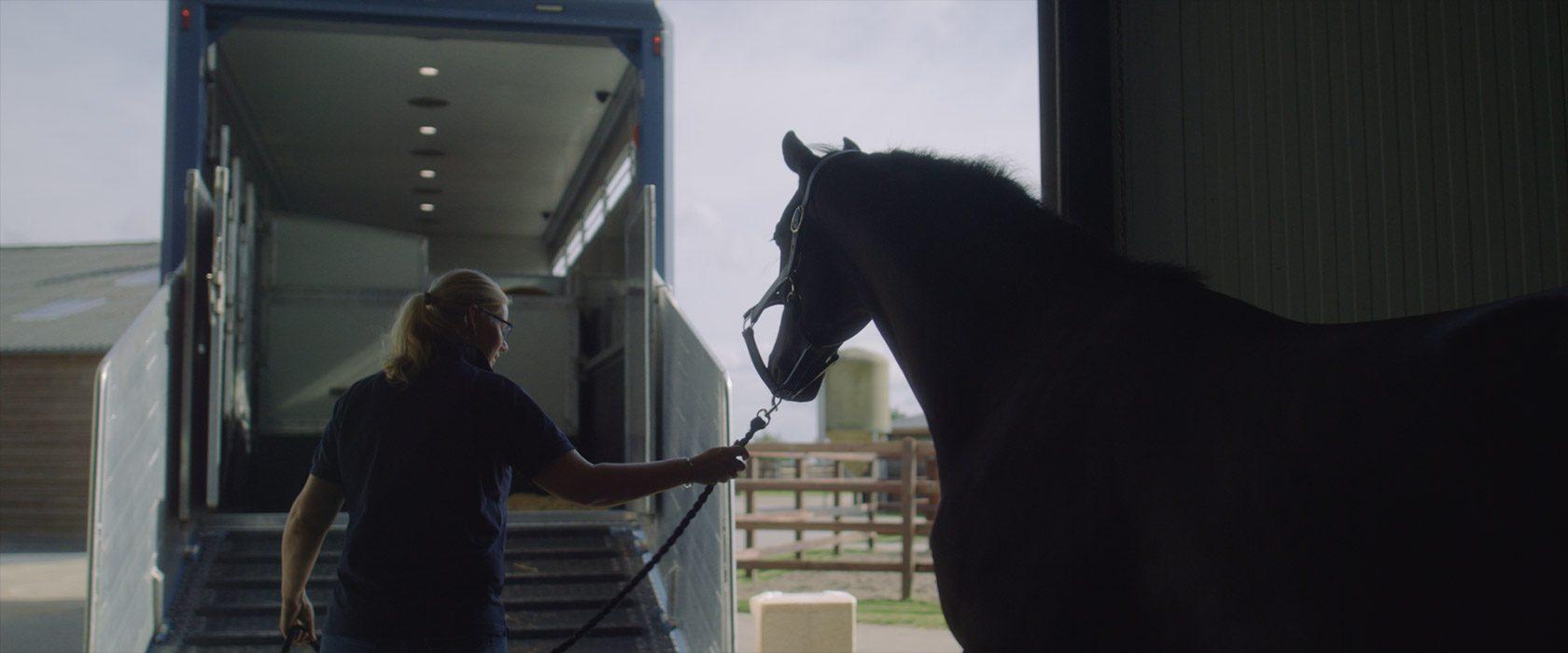 film_still_horses4_1680x700